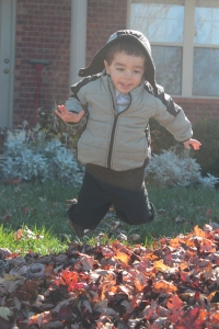 Nicholas jumping in the leaves