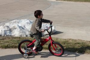 Nicholas bike