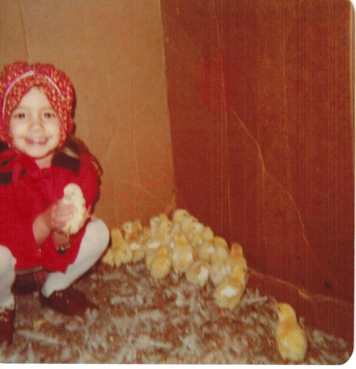 1979 baby chicks
