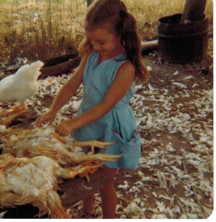 1979 butchering chickens
