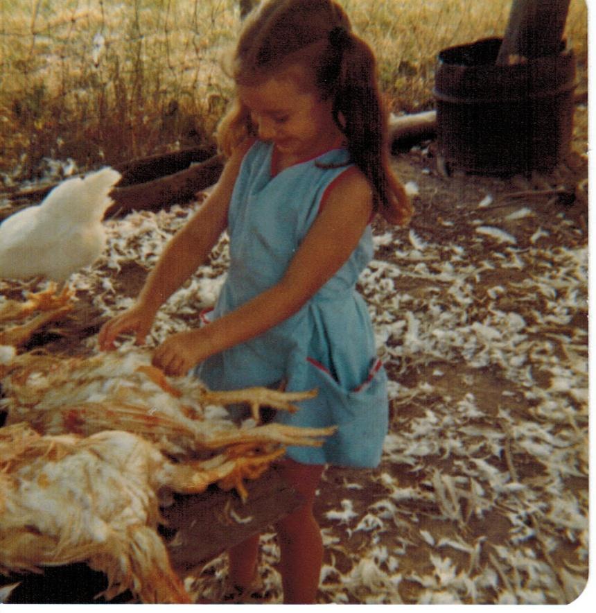 1979 butchering chickens