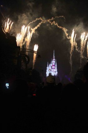 """See how far we are from the castle? See those black things blocking the view? They're heads. And there was a solid wall of them taking up the entire space between us and the castle. This is what a """"slow"""" week looks like at Disney World."""