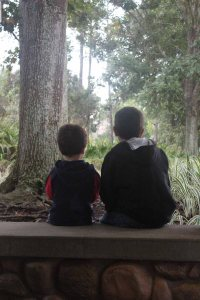Love this picture. It illustrates so much. This is at Port Orleans Riverside, waiting for the bus.