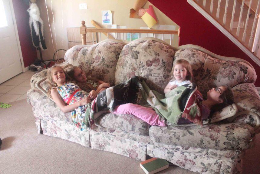 Blog Cross-Pollenating Cousins