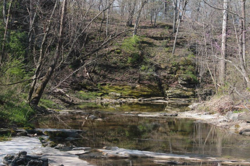 Gans Creek blog magic isle (105)