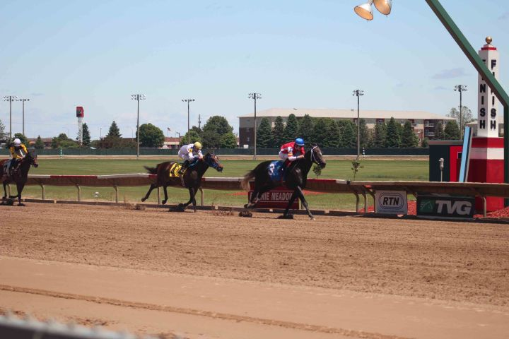 blog horse racing