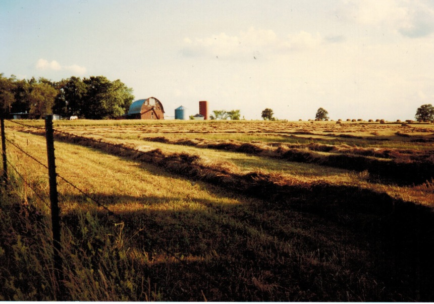 1990-something-hay